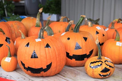 ハロウィンかぼちゃを作って婚活!